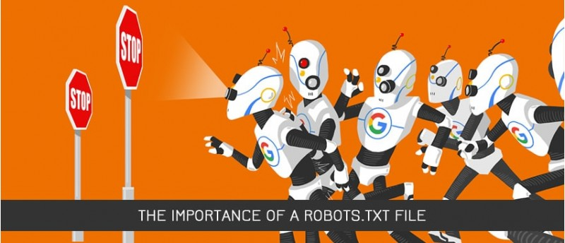 The Importance of a robots.txt File